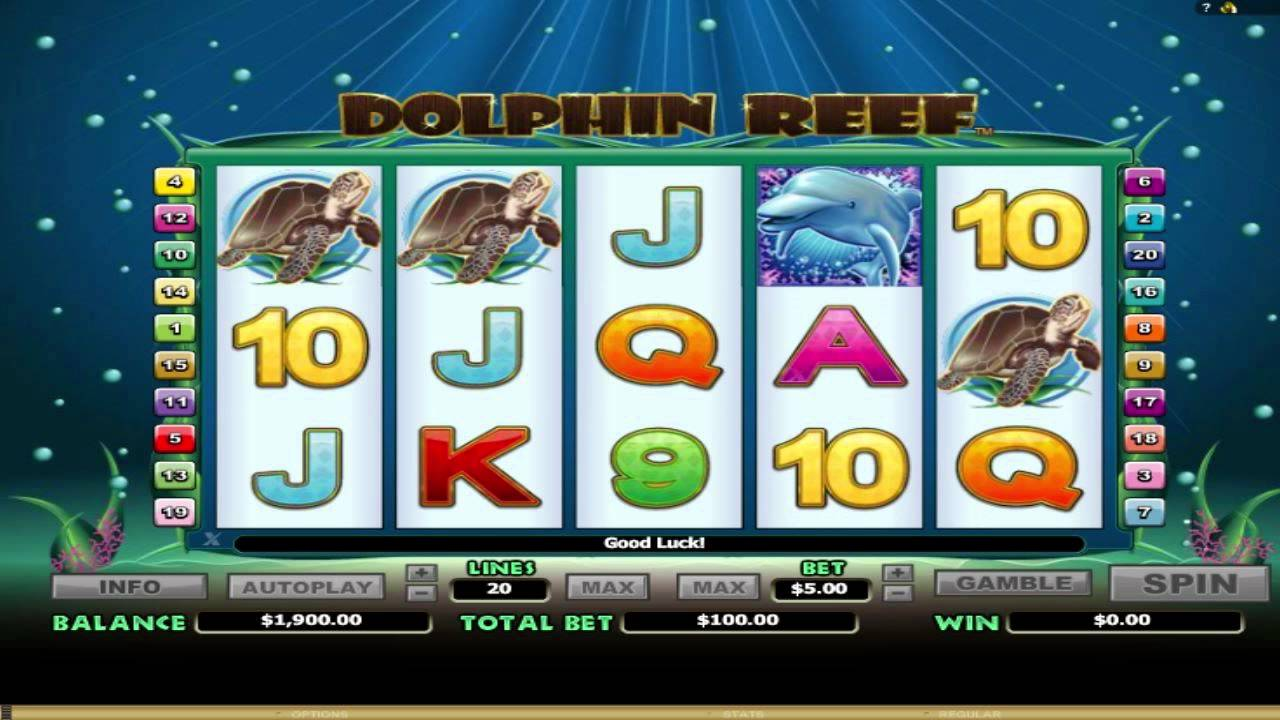 Guide to Tips and How to Play Online Slots For Beginners